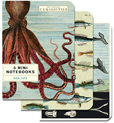 Octopus Notebook Set